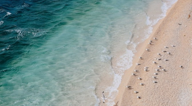 Cottesloe Beach (Cottesloe, Perth, Western Australia)